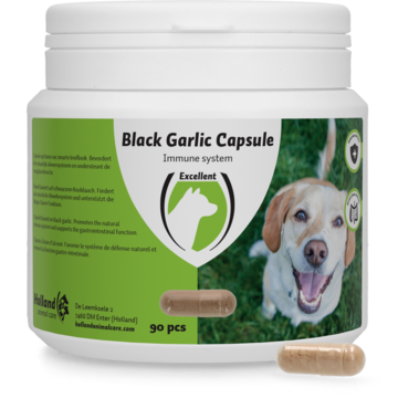 Black Garlic capsule dog