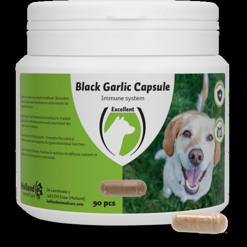 Black Garlic capsule dog