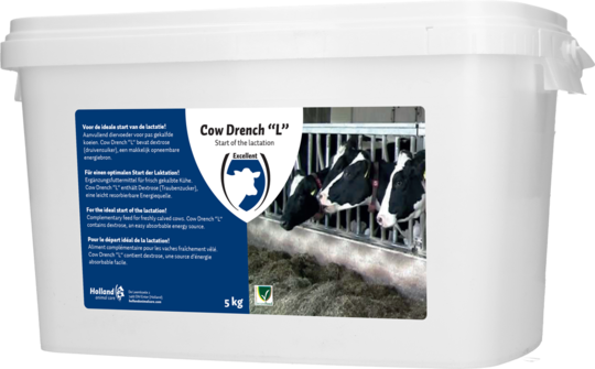 Cow Drench