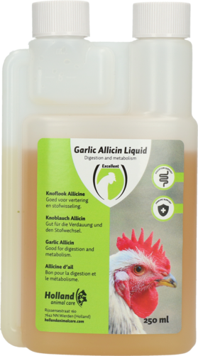 Garlic Allicin Liquid