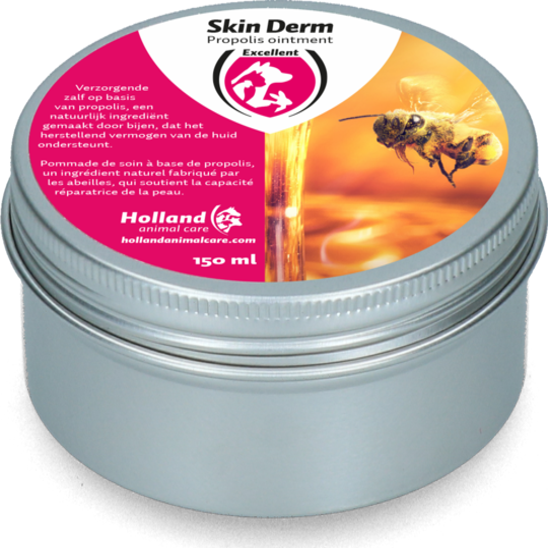 Skin Derm Propolis Ointment